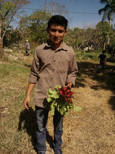 boy with Stawberry